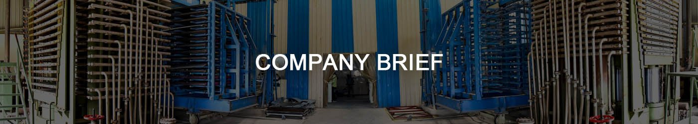 Company Brief
